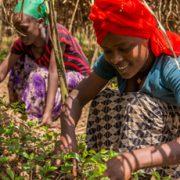 empoderamiento-mujeres-igualdad-fairtrade